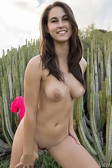 Nina Sphinx in Wonders by Tora Ness outdoor sunny brunette brown eyes boobies trimmed pussy custom