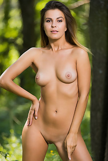 Zelda B in Outdoor Seduction by Karl Sirmi outdoor woods sunny brunette brown eyes boobies shaved pussy