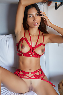 Presenting Baby Nicols by Erro indoor brunette brown eyes new model presenting boobies shaved ass pussy