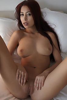 paula shy konge erro indoor brunette brown boobies ass pussy...