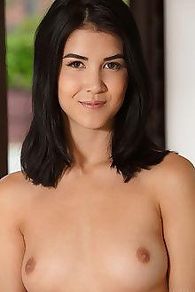 lady dee new model presenting luca helios indoor brunette brown pussy ass custom