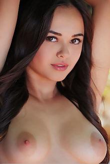 li moon sineza arkisi indoor brunette brown asian boobies shaved ass pussy