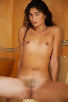 Bambi Joli in Private Show by Erro indoor brunette brown eyes small tits trimmed pussy ass custom