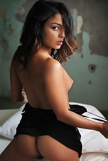 Joy Lamore in Round Bed by Artofdan indoor petite brunette brown eyes shaved pussy