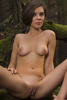 dakota a siemo karl sirmi outdoor brunette blue boobies shaved pussy woods