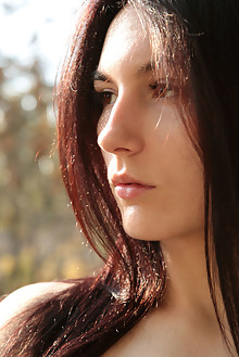Presenting Luna Didier by Natasha Schon indoor brunette brown eyes shaved pussy