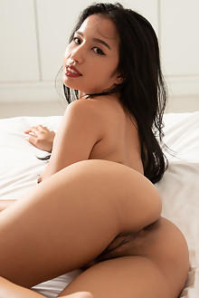 Presenting Norah by Robert Graham asian indoor brunette black hair brown eyes trimmed pussy ass