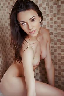 Presenting Adel Morel by Arkisi indoor brunette brown eyes shaved pussy ass latest