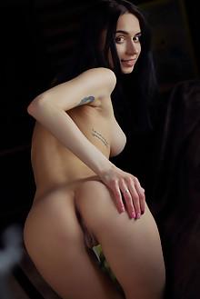 Dita V in Window by Arkisi indoor brunette black hair brown eyes boobies tattoo shaved ass