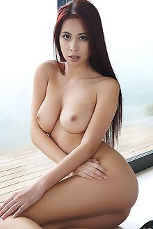 paula shy ledania erro indoor brunette brown boobies shaved ...