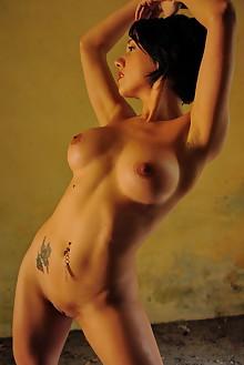 Zeo in Dry Leaves by Oliver Nation indoor brunette boobies t...