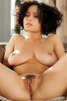 pammie lee pamma ron offlin indoor brunette brown boobies bu...