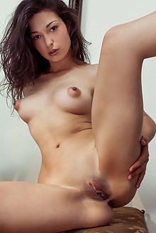 Presenting Elyse by Albert Varin indoor brunette brown eyes boobies shaved pussy custom