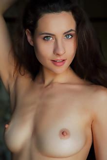 Presenting Mara Blake by Arkisi indoor brunette black hair blue eyes boobies shaved pussy labia custom