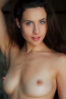 Presenting Mara Blake by Arkisi indoor brunette blue eyes shaved pussy labia
