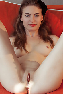 Alaine in Show And Tell by Albert Varin indoor brunette blue eyes small tits shaved pussy