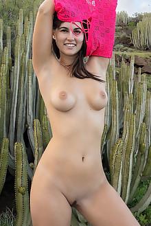 Nina Sphinx in Wonders by Tora Ness outdoor sunny brunette b...