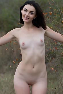 Presenting Cordoba by Marlene outdoor brunette black hair blue eyes shaved