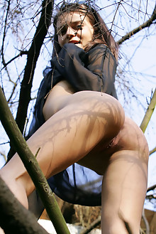 Roza A in Bird On A Tree by Thierry Murrell outdoor sunny br...