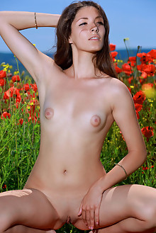 Rosella in Lingerie and Poppies by Matiss outdoor sunny fields brunette brown eyes puffy nipples shaved pussy ass custom
