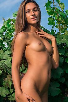 kenya new model presenting alex iskan outdoor brunette tanned pussy