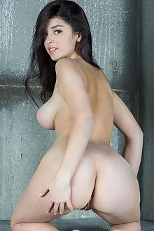 evita lima escala rylsky indoor brunette hazel boobies busty shaved ass pussy hips