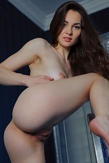 verona new model presenting arkisi indoor brunette brown ass pussy shaved