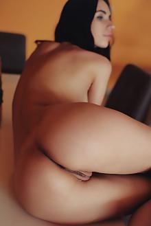 Dita V in After Work by Arkisi indoor brunette black hair brown eyes boobies shaved pussy ass custom