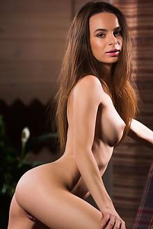 Debora A in Secrets by Karl Sirmi indoor brunette brown eyes shaved pussy