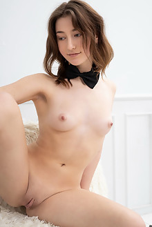 Presenting Deepika by Tora Ness indoor brunette blue eyes shaved pussy small tits
