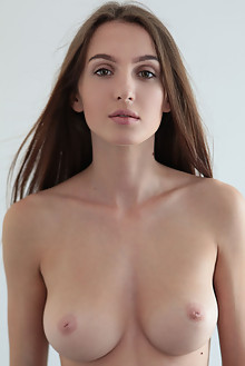 Presenting Holly Haim by Natasha Schon indoor brunette green eyes boobies shaved custom