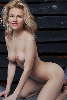 zarina metehi vicente silva indoor blonde brown boobies shaved pussy ass custom