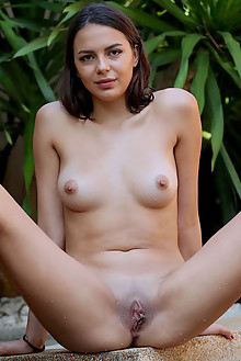Presenting Angelina Moore by Dave Lee outdoor sunny brunette boobies shaved pussy poolside wet