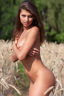 Valya in In The Wheat Field by Thierry Murrell outdoor sunny...