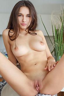 gloria sol radoti alex lynn indoor brunette brown boobies shaved ass pussy