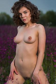 dakota a varigatu karl sirmi outdoor brunette blue shaved ass pussy