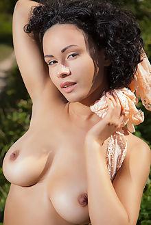 pammie lee evotis nudero outdoor brunette boobies unshaven ebony